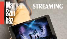 Pesti Magyar Színház streaming